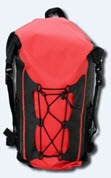 Backpack Style Shown Here